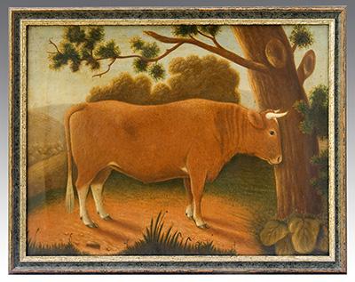 A Prize Short Horn Bull