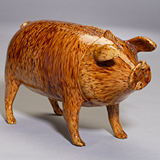 A Sussex Pig from Rye